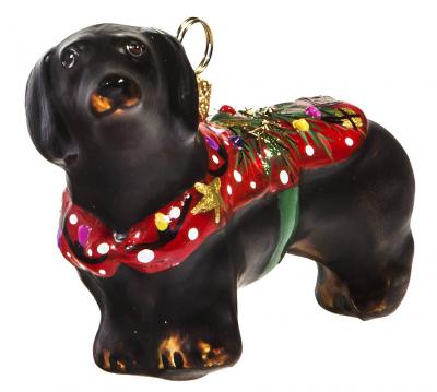 Dachshund (Black) in Ugly Christmas Sweater