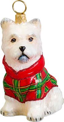 Westie w/ Tartan Plaid Coat