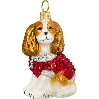 Cavalier King Charles Spaniel in Full Crystal Coat