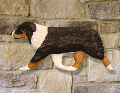 Australian Shepherd Dog Wall Art - Close Up
