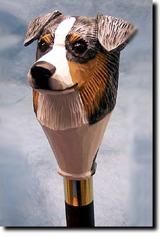 Australian Shepherd  Dog Breed Walking Stick