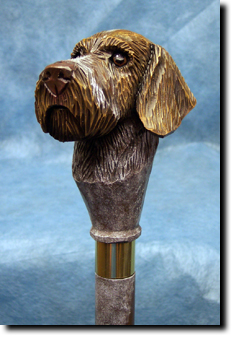 German Wirehaired Pointer Dog Breed Walking Stick