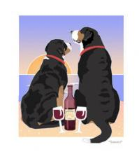 Greater Swiss Mountain Dog Sunset Dogs