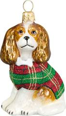 Cavalier King Charles Spaniel <br />w/ Tartan Plaid Coat
