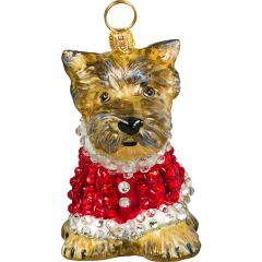 Yorkie in Full Crystal Coat