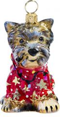 Yorkie in Ugly Christmas Sweater
