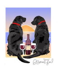 Labrador Retrievers - Black - Sunset Dogs