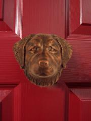 Golden Retriever Dog Knocker