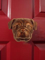 Pug Dog Knocker