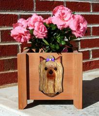 Yorkshire Terrier Dog Breed Garden Planter