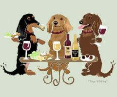 Dachshund, Long Hair Dog's WINEing