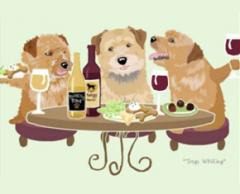 Norfolk Terrier Dog's WINEing
