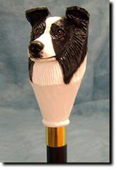 Border Collie Dog Breed Walking Stick