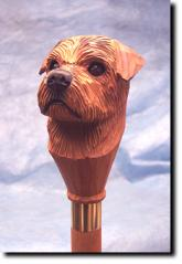 Norfolk Terrier Dog Breed Walking Stick