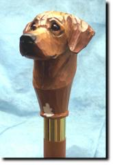 Rhodesian Ridgeback Dog Breed Walking Stick